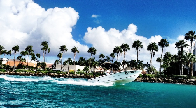 Mermaid Island – Aruba!
