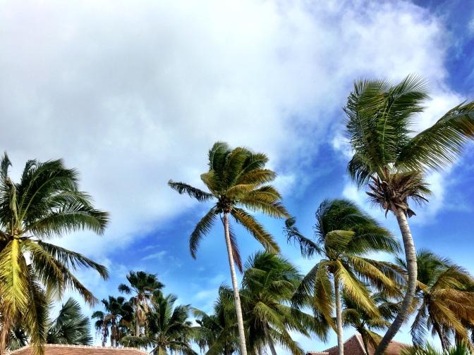 Mermaid Island – St. Maarten
